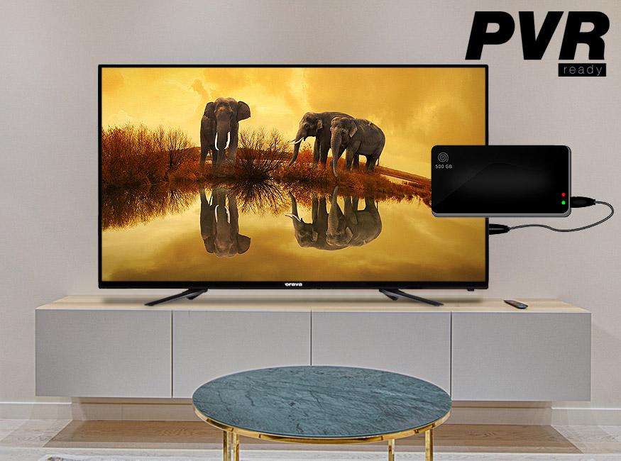 "Televize Orava LT-636 (2020) / 24"" (60 cm)"