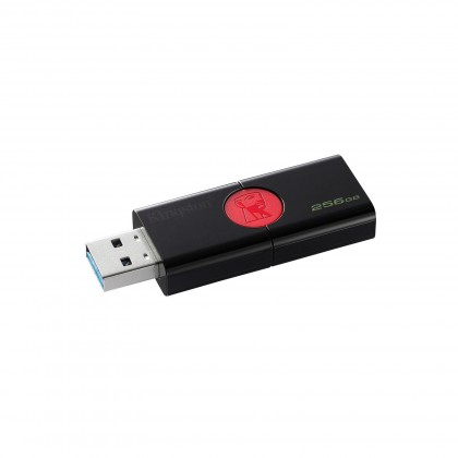 256GB Kingston USB 3.0 DT106 (až 130MB/s)