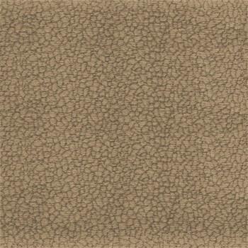 Amigo - Pravý roh (maroko 2353)