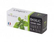 BIO Bazalka pro SMART květináče Véritable BAZALKA001