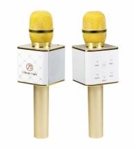 Bluetooth karaoke mikrofon s reproduktorem Technaxx BT-X31