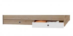 Cariba - Úložný prostor pod postel (san remo dub, bílá)
