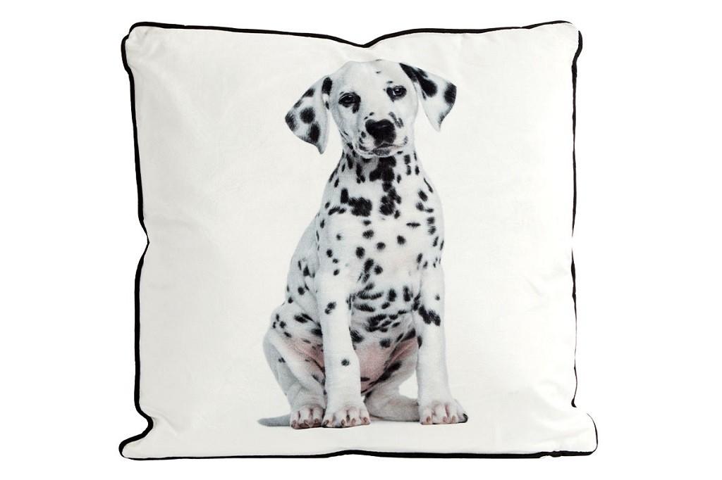 Dekorační polštáře Polštář Dalmatýn (45x45 cm, bílá)