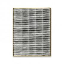 Filtr do čističky vzduchu Toshiba CAFX50XPL CAF-H30(W)