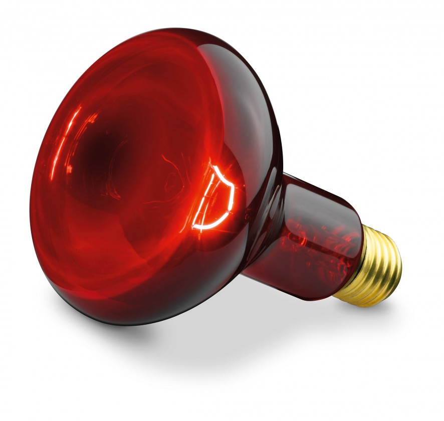 Halogenové žárovky Náhradní žárovka pro Beurer IL 11, 100W