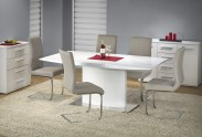 Jídelní stůl Elias  (bílá)