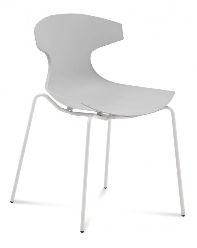 Jídelní židle Echo - Jídelní židle (bílý lak, bílá)