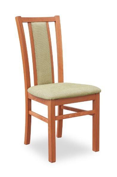 Jídelní židle Gerard 8  (hnědo-zelená torrent garden, třešeň antik)