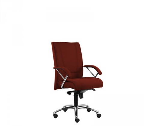 kancelářská židle Demos Prof - Kancelářská židle s područkami (alcatraz 32)