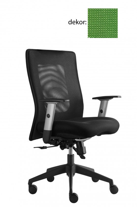 kancelářská židle Lexa (pola 493, sk.4)