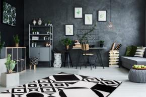 Koberec Black & white (160x230 cm, černá/bílá)