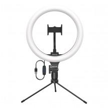 LED světlo Baseus (CRZB10-A01)