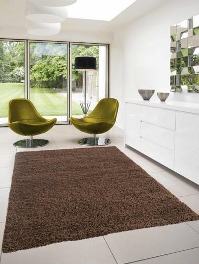 Nábytek Dream Shaggy - koberec, 170x120cm (100%PP shaggy, hnědá)