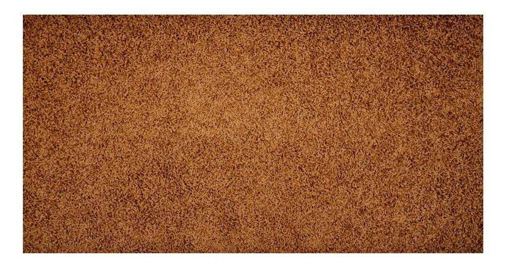 Nábytek Elite Shaggy - koberec, 240x160cm (100%PP shaggy, hnědá)