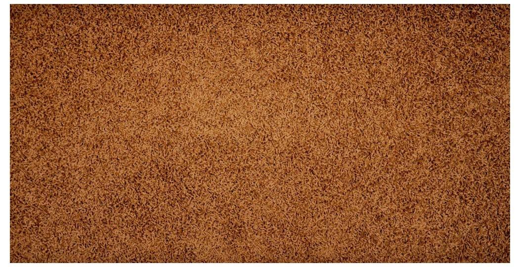 Nábytek Elite Shaggy - koberec, 300x200cm (100%PP shaggy, hnědá)