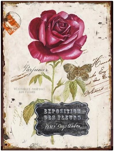 Nábytek Obraz na zeď - plátno (béžová s růží)