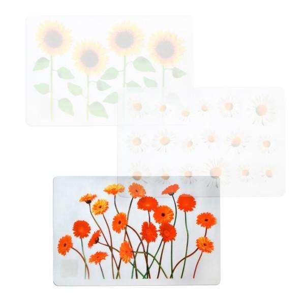 Nábytek Prostírání (květiny gerbera, transparentní)