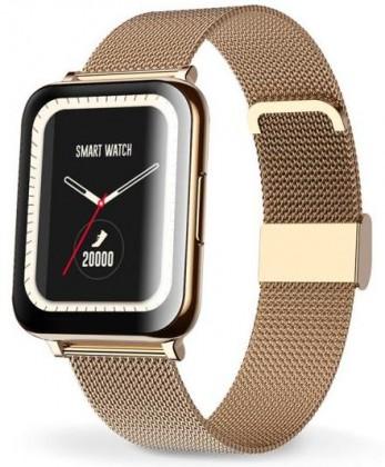 Pánské chytré hodinky Chytré hodinky Aligator Watch Life, 3x řemínek, zlatá