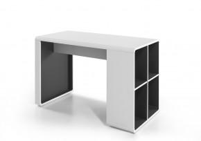 Psací stůl Naos (bílá, antracit)