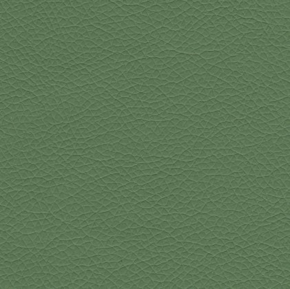 Rohová sedací souprava Wilma - Pravá (pulse elephant D224, korpus/pulse grass D241)
