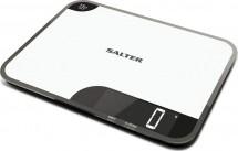 SALTER 1079