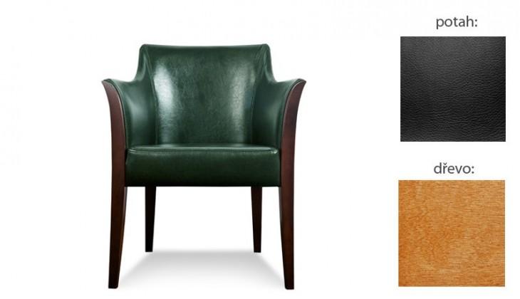 Samostatné křeslo Bari - Křeslo (extra leather black / dřevo č. 4)
