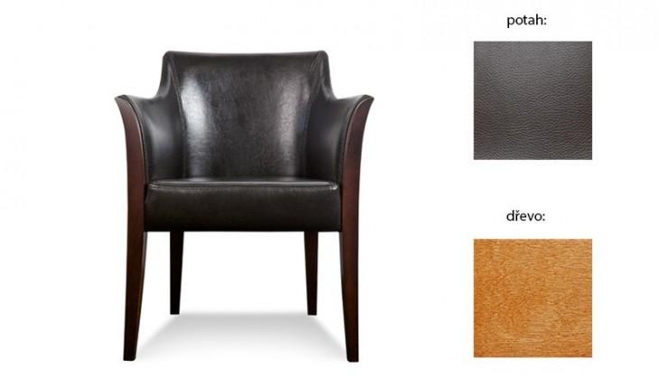 Samostatné křeslo Bari - Křeslo (extra leather brown / dřevo č. 4)