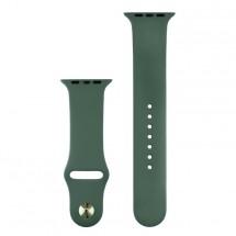 Silikonový sportovní řemínek pro Apple watch 38/40 mm, T zelená R