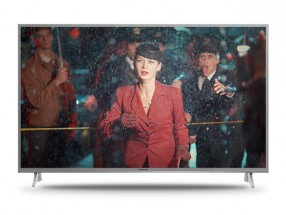 "Smart televize Panasonic TX-49FX613E (2018) / 49"" (123 cm)"