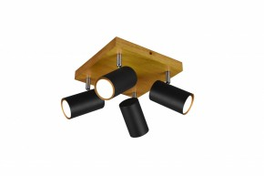 Spotové světlo Trio TR 812400432, 4xGU10