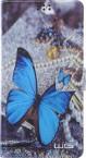 """Univerzální pouzdro pro telefon do 5,5"""", motýlek"""