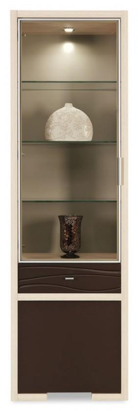 Vitrína Cava - CV 7, Vitrína (thuje/metalic bronz)